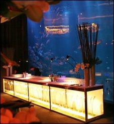 Restaurant ozu de thierry marx paris 16 me japonais - Restaurant cuisine moleculaire paris thierry marx ...